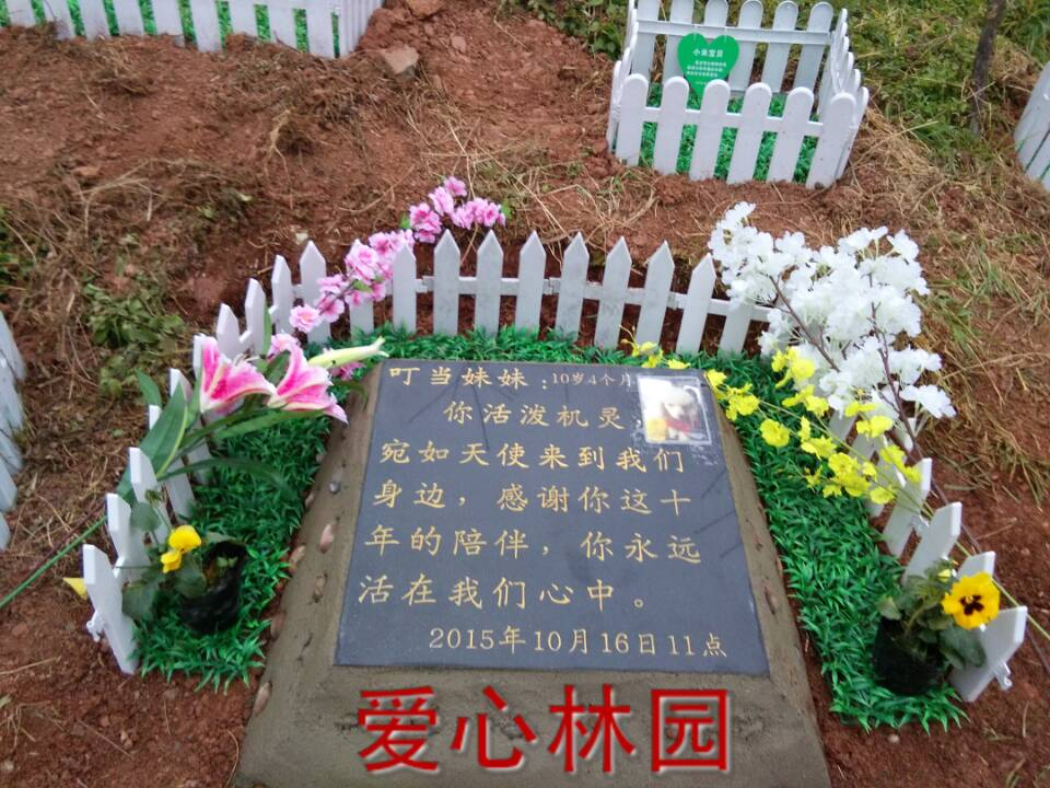 黑色大理石宠物墓碑